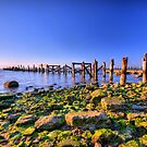 Old Bay Pier by Joel Hall