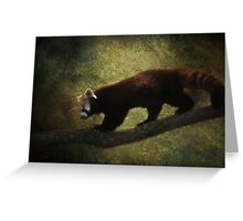 R is for.....Red Panda Greeting Card