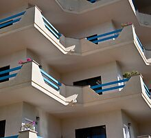 La Paz Balconies by phil decocco