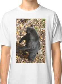 Please Sir more honey!! - Black bear Classic T-Shirt