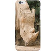 White Rhino  iPhone Case/Skin