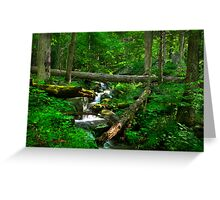 Smoky Mountains Spring Greeting Card