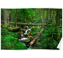 Smoky Mountains Spring Poster