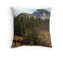 Mt. Rundell - Banff National Park Throw Pillow