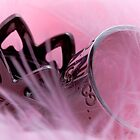 Crown on a pink feather boa. by Darren Peet