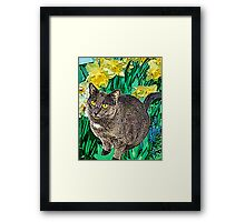 Cat and Daffodils Framed Print