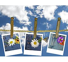 Denim Delight Photographic Print