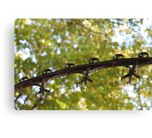Metal and Leaves Canvas Print
