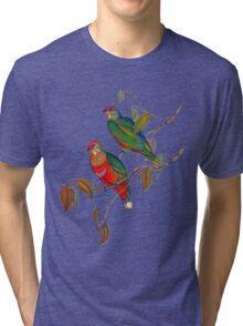 rose-crowned fruit dove  Tri-blend T-Shirt