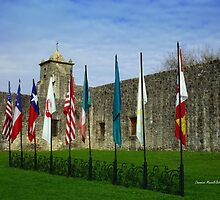 Flags at Spanish Fort by Charmiene Maxwell-Batten