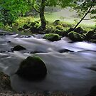 Golitha Falls, Cornwall by Lissywitch