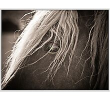 blink of an eye Photographic Print