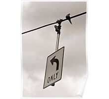 Nonconformist Bird On A Wire... Poster