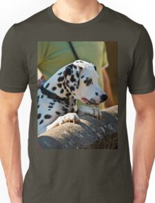 Dalmatian watching over a wall Unisex T-Shirt
