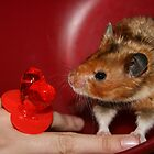 Hamster and the ring pop by Nehama  Verter