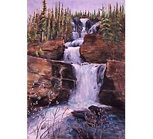 Waterfall Willows Photographic Print