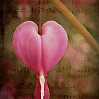 My Heart Bleeds by Shelly Harris
