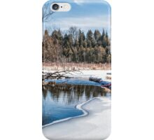 The creek iPhone Case/Skin