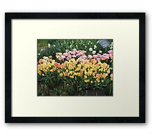 Flower Jubilee Framed Print