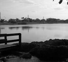 The Lake by wutang4life36