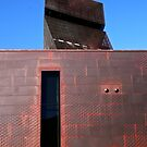 De Young Museum Tower by Jane McDougall