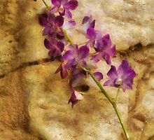 Orchid - Just Splendid by Mike  Savad