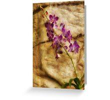 Orchid - Just Splendid Greeting Card
