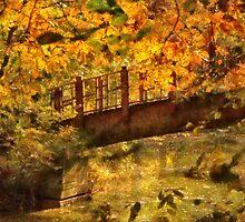Bridge - The hidden bridge by Mike  Savad