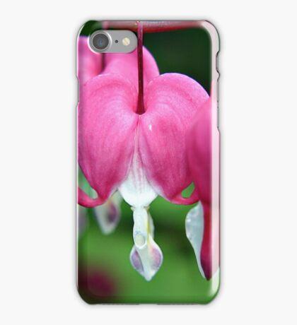 Bleeding Hearts (Dicentra) flowers iPhone Case/Skin