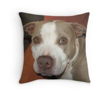I Didn't Do It !! Throw Pillow