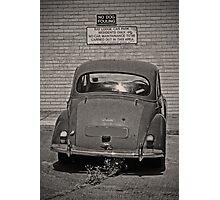 Moggy Minor Photographic Print