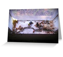 Window Sill Collection Greeting Card