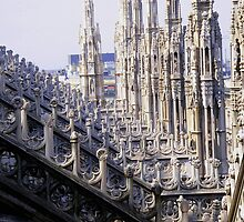 Duomo di Milano - details by sstarlightss