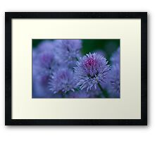 Blush Brush Framed Print