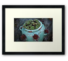 After the Winter Framed Print