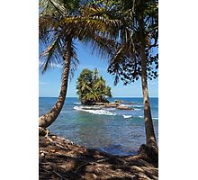 Small tropical island with coconut palm trees Photographic Print