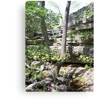beautiful creeks in Missouri Canvas Print