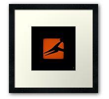 Shadow - Pterosaur Framed Print