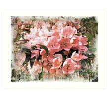 Sakura style  Art Print