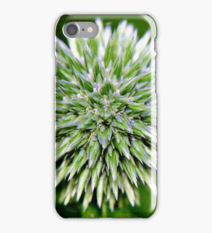 Globe Thistle (Echinops) Seed head iPhone Case/Skin