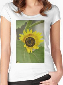 Sunflower - macro Women's Fitted Scoop T-Shirt