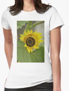Sunflower - macro Womens Fitted T-Shirt