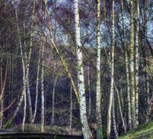Woodland Spaces Sticker