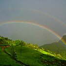 Somewhere over the Rainbow... by Saikat Babin Biswas