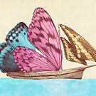 The Butterfly Ship  by Eric Fan