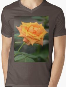 Yellow Rose With Tint of Peach Mens V-Neck T-Shirt