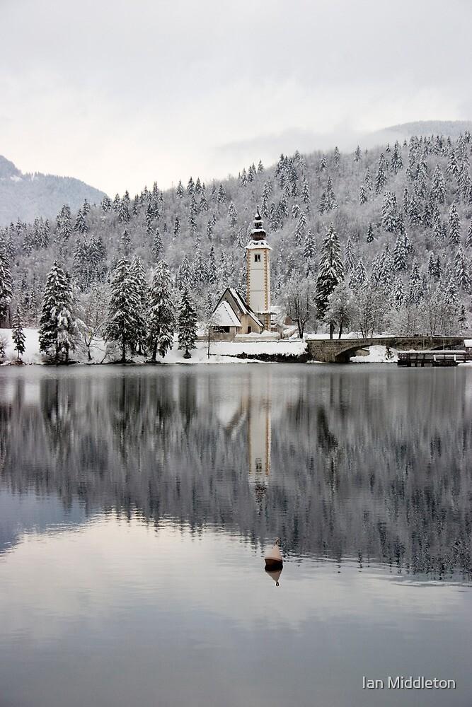 Alpine winter by Ian Middleton