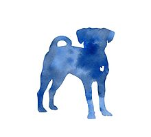 Blue dog kids wall decor Photographic Print