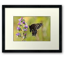I Believe I Can See The Future Framed Print