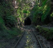 The Old Helensburgh Tunnel by Toni McPherson